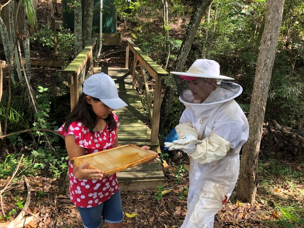 Sarah beekeeping